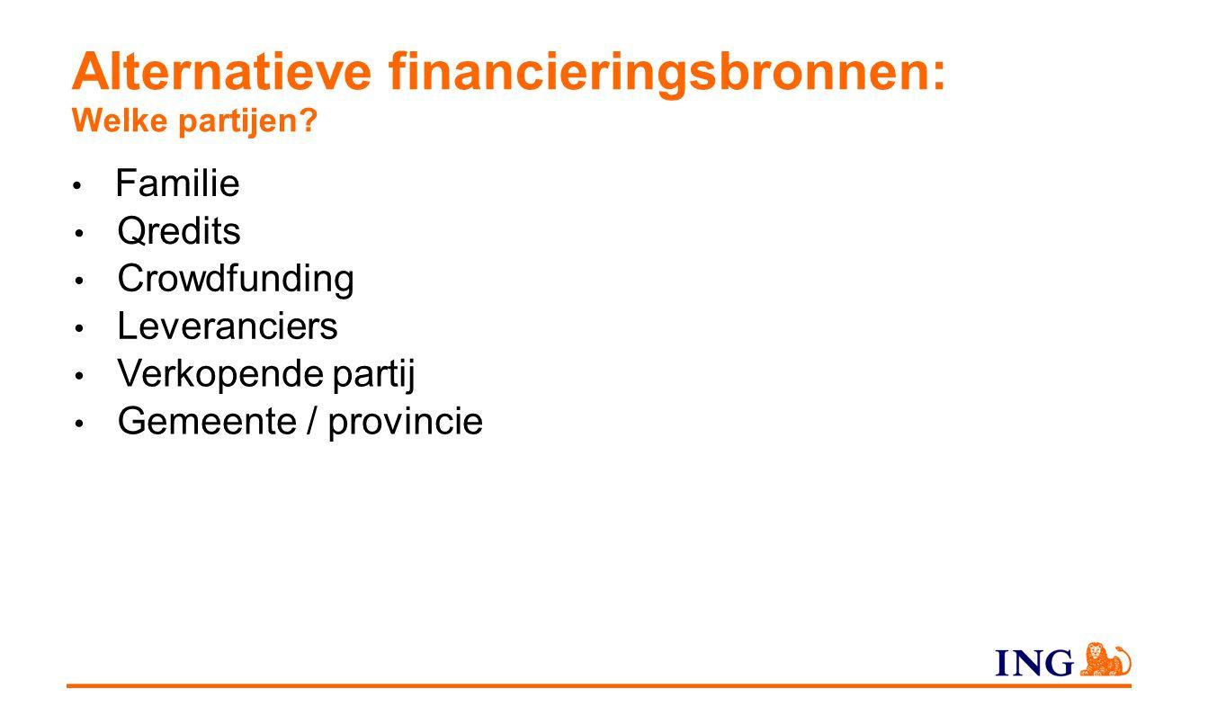 Alternatieve financieringsbronnen: Welke partijen