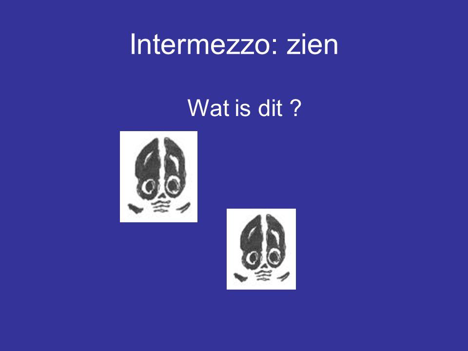 Intermezzo: zien Wat is dit