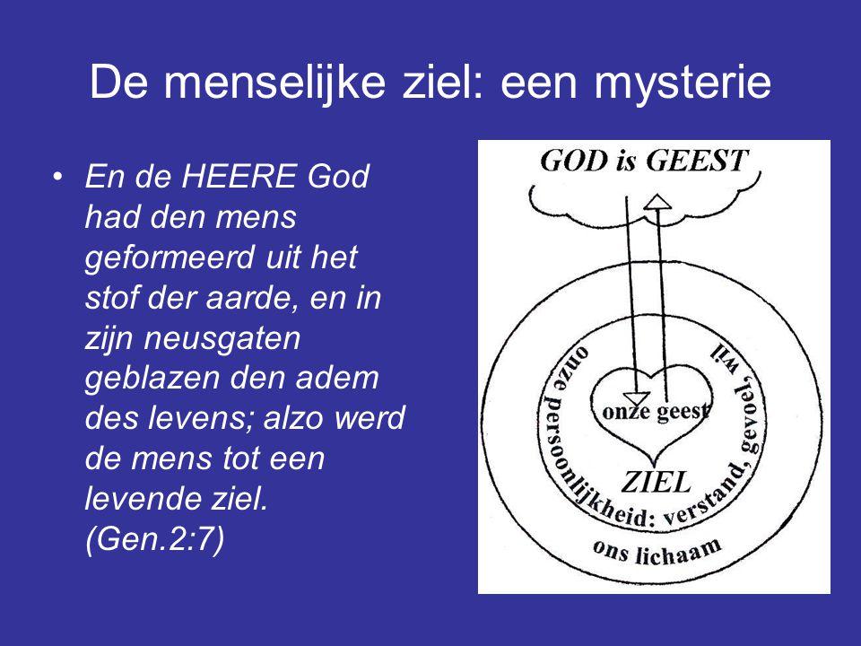 De menselijke ziel: een mysterie