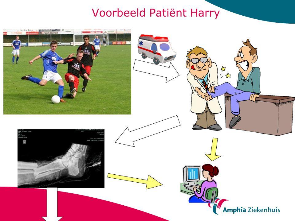 Voorbeeld Patiënt Harry