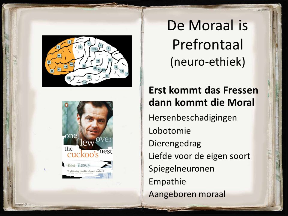 De Moraal is Prefrontaal (neuro-ethiek)