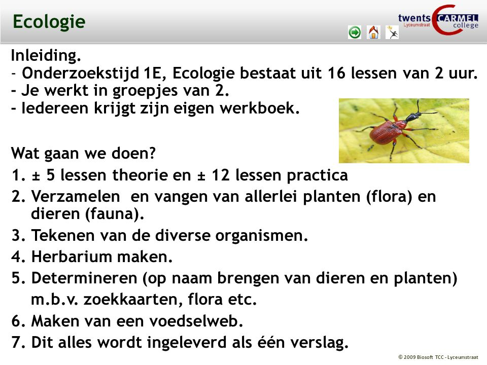 Ecologie Inleiding. Onderzoekstijd 1E, Ecologie bestaat uit 16 lessen van 2 uur. - Je werkt in groepjes van 2.