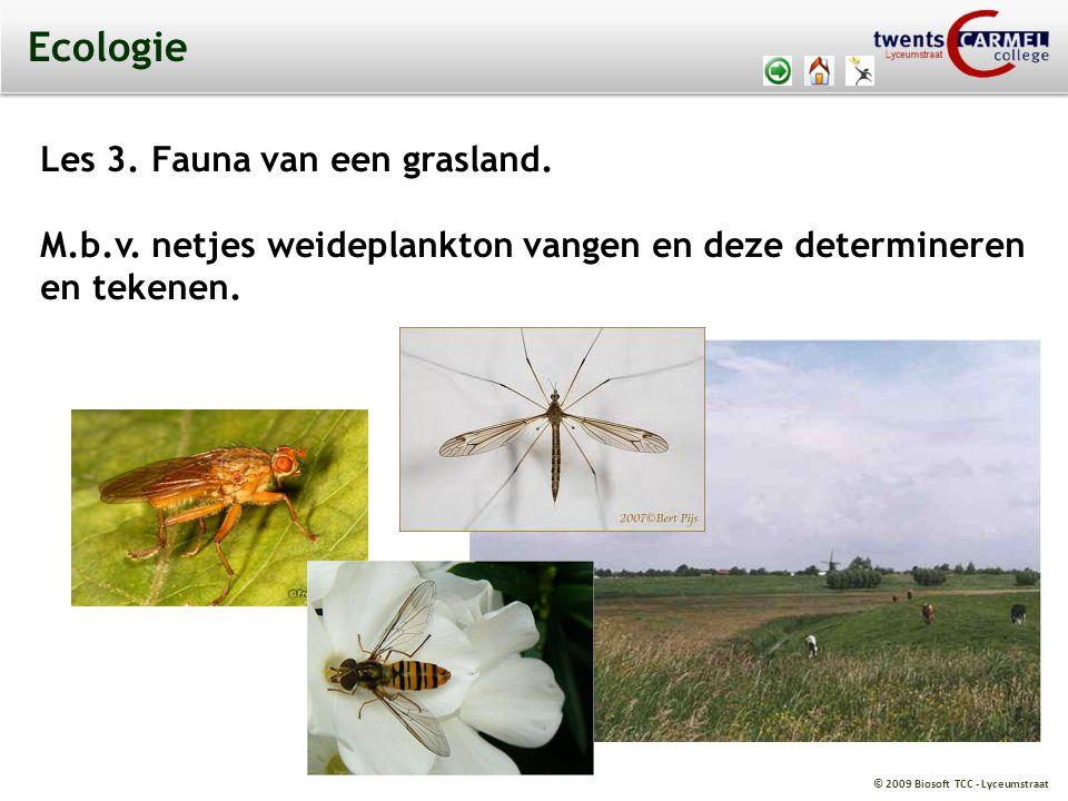 Ecologie Les 3. Fauna van een grasland.