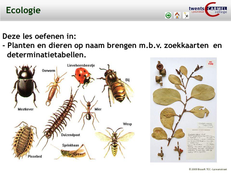 Ecologie Deze les oefenen in: