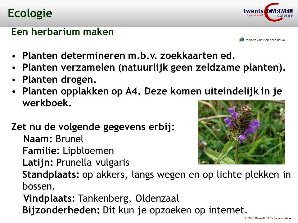 Ecologie Een herbarium maken