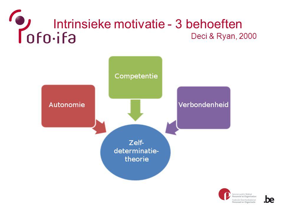 Intrinsieke motivatie - 3 behoeften