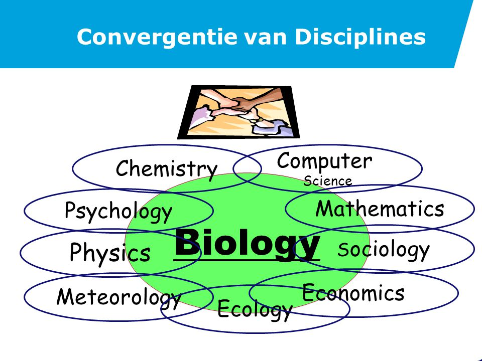 Subdisciplines Biologie Chemie Economie Systeem chemie Econophysica
