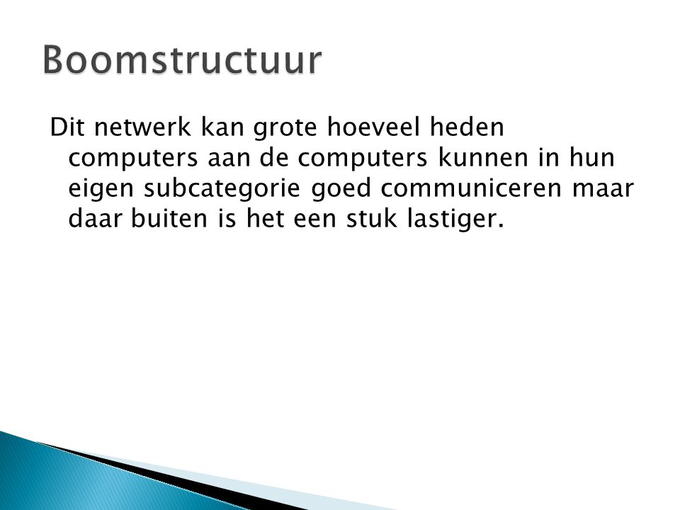 Boomstructuur