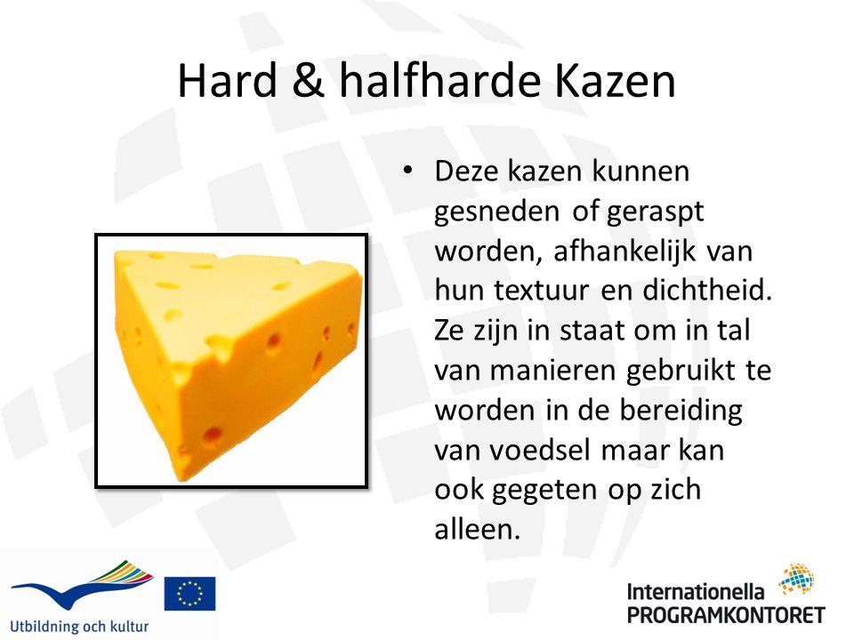 Hard & halfharde Kazen