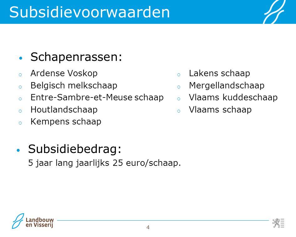Subsidievoorwaarden Schapenrassen: Subsidiebedrag: Ardense Voskop