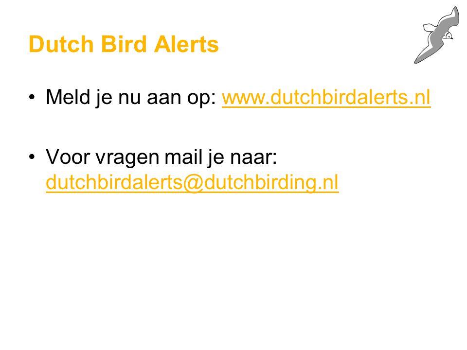 Dutch Bird Alerts Meld je nu aan op: www.dutchbirdalerts.nl