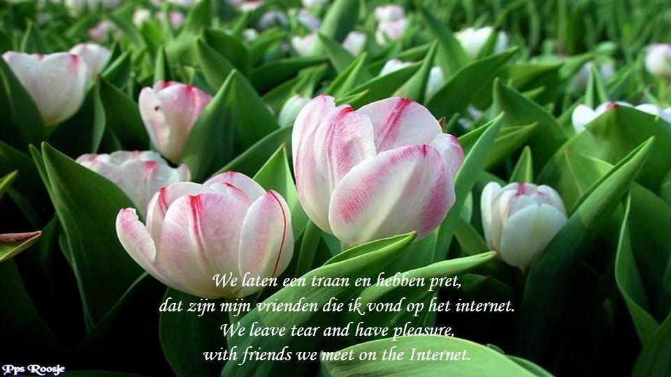 We laten een traan en hebben pret, dat zijn mijn vrienden die ik vond op het internet.