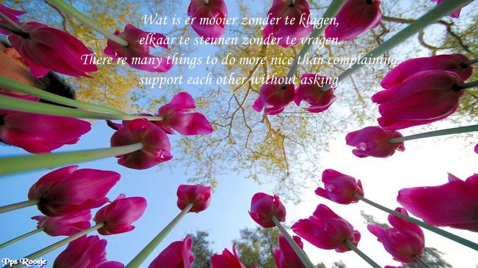 Wat is er mooier zonder te klagen, elkaar te steunen zonder te vragen