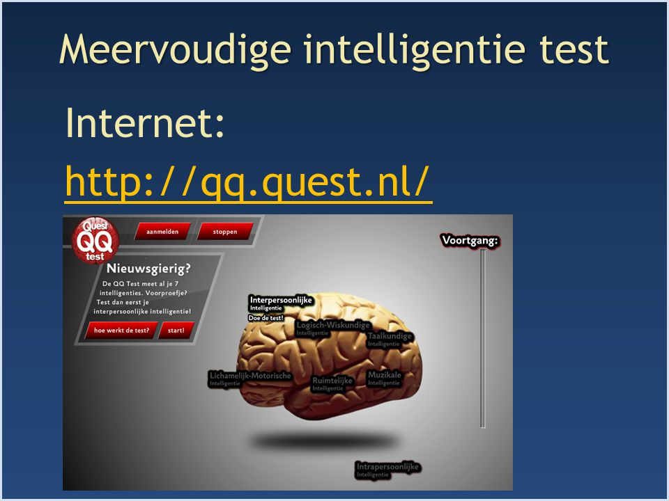 Meervoudige intelligentie test