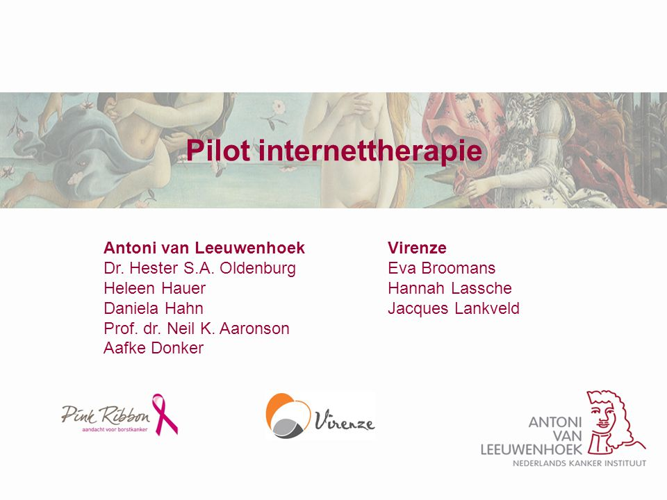 Pilot internettherapie