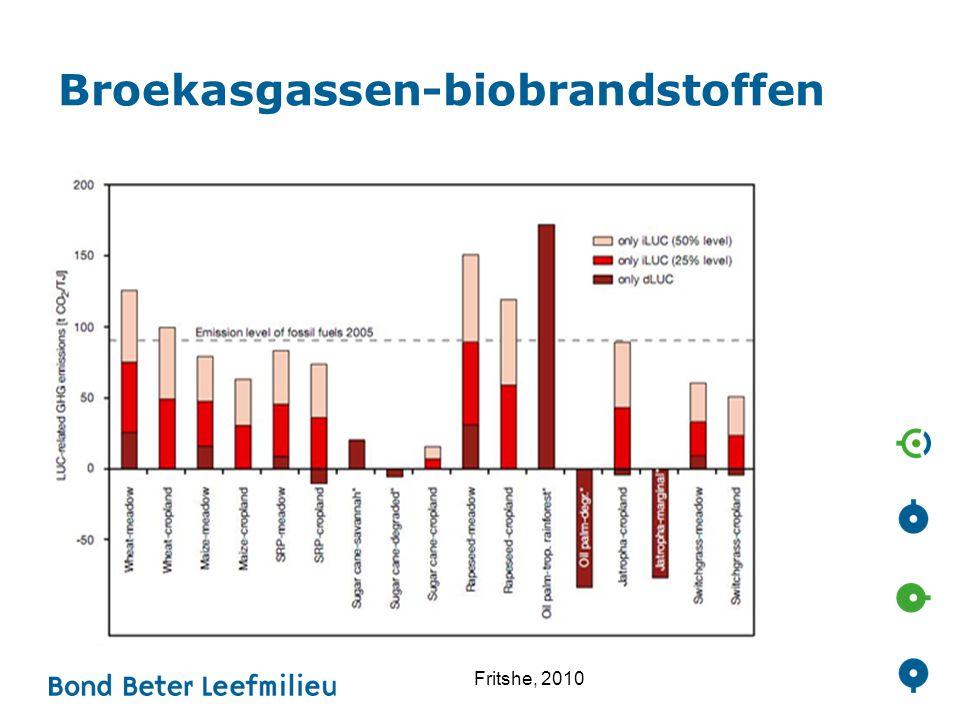 Broekasgassen-biobrandstoffen