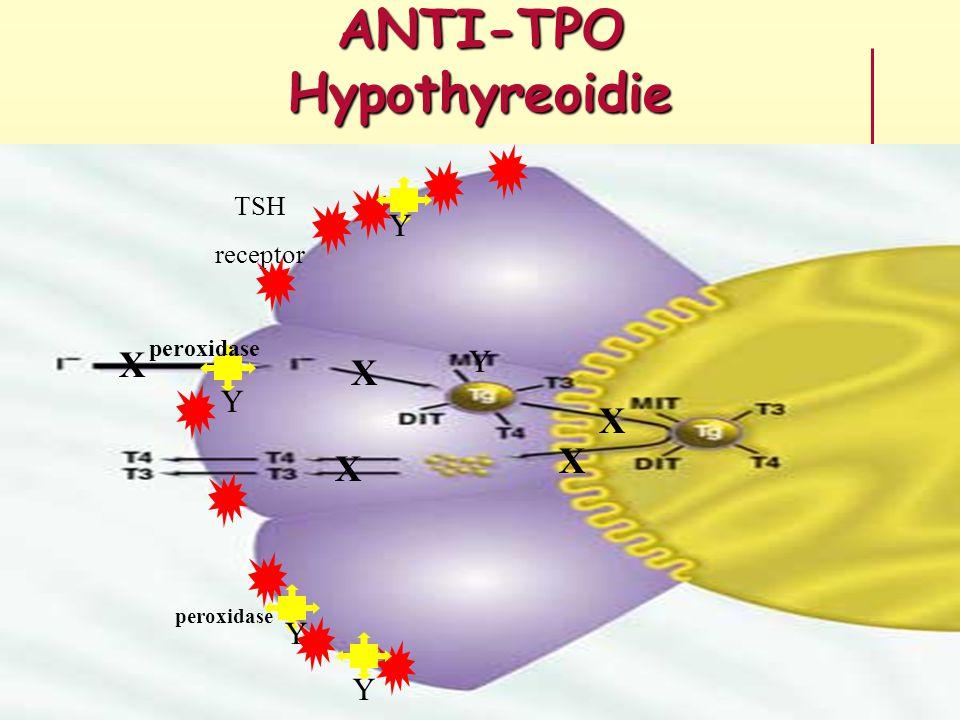 anti tpo schildklier