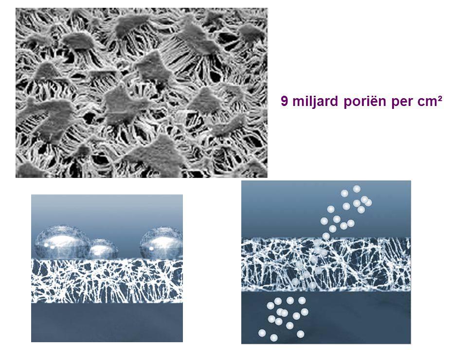 9 miljard poriën per cm²