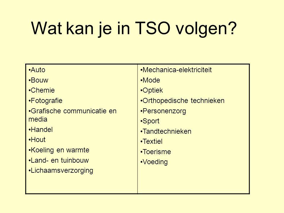 Wat kan je in TSO volgen •Auto •Bouw •Chemie •Fotografie