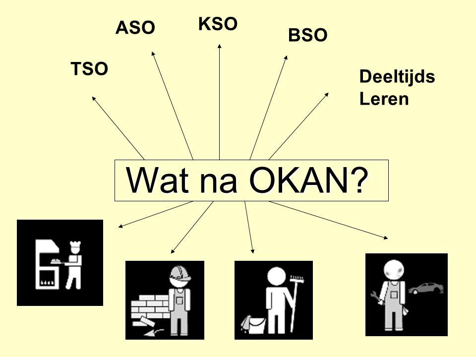 KSO ASO BSO TSO Deeltijds Leren Wat na OKAN