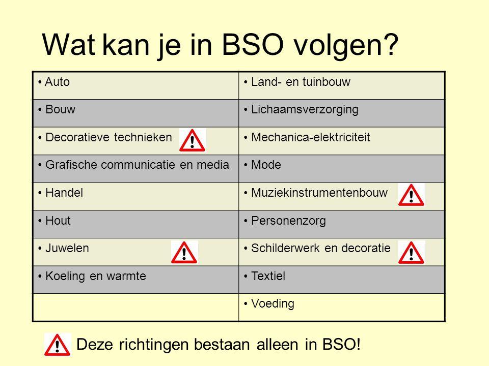 Wat kan je in BSO volgen Deze richtingen bestaan alleen in BSO!
