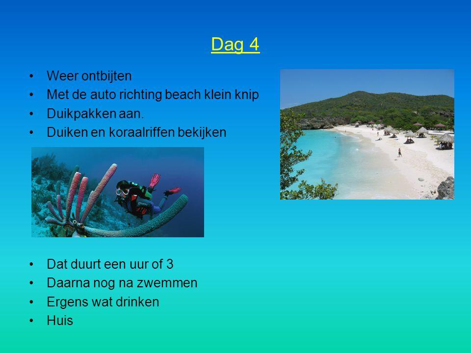 Dag 4 Weer ontbijten Met de auto richting beach klein knip
