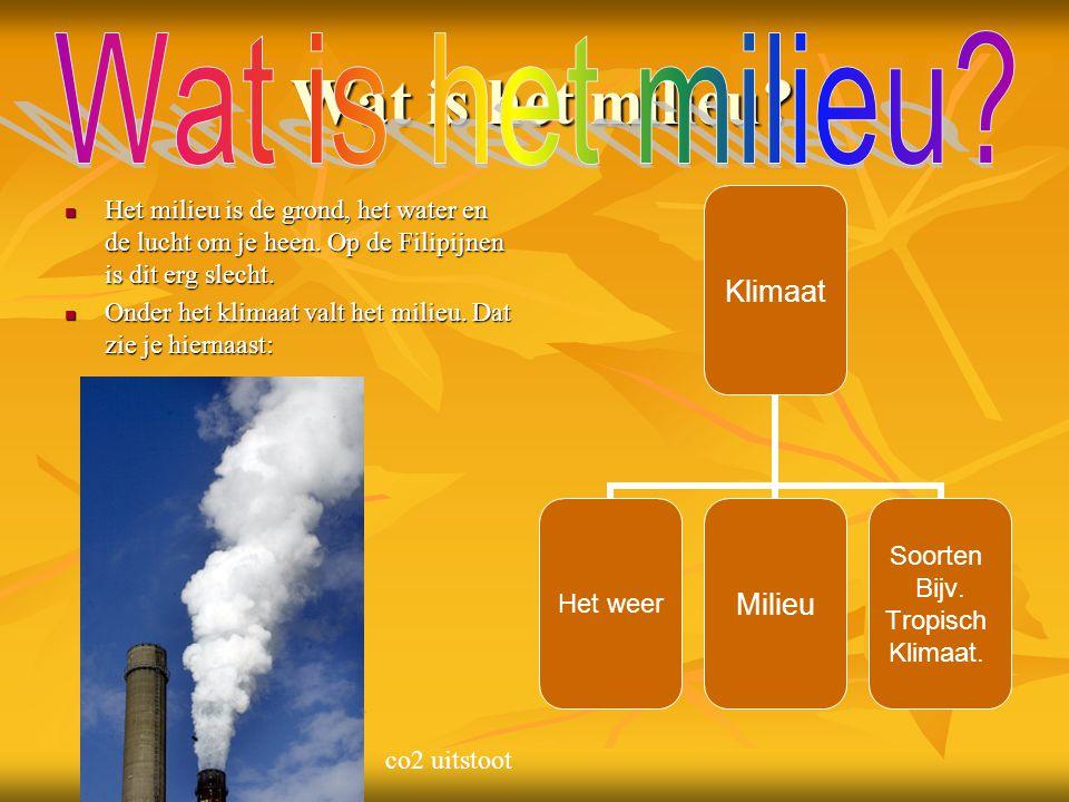Wat is het milieu Wat is het milieu