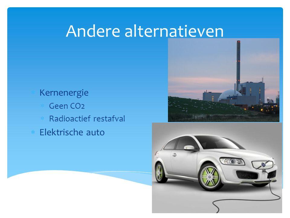 Andere alternatieven Kernenergie Elektrische auto Geen CO2