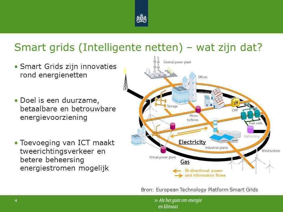 Smart grids (Intelligente netten) – wat zijn dat
