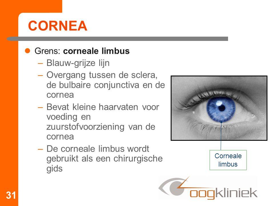 CORNEA Blauw-grijze lijn