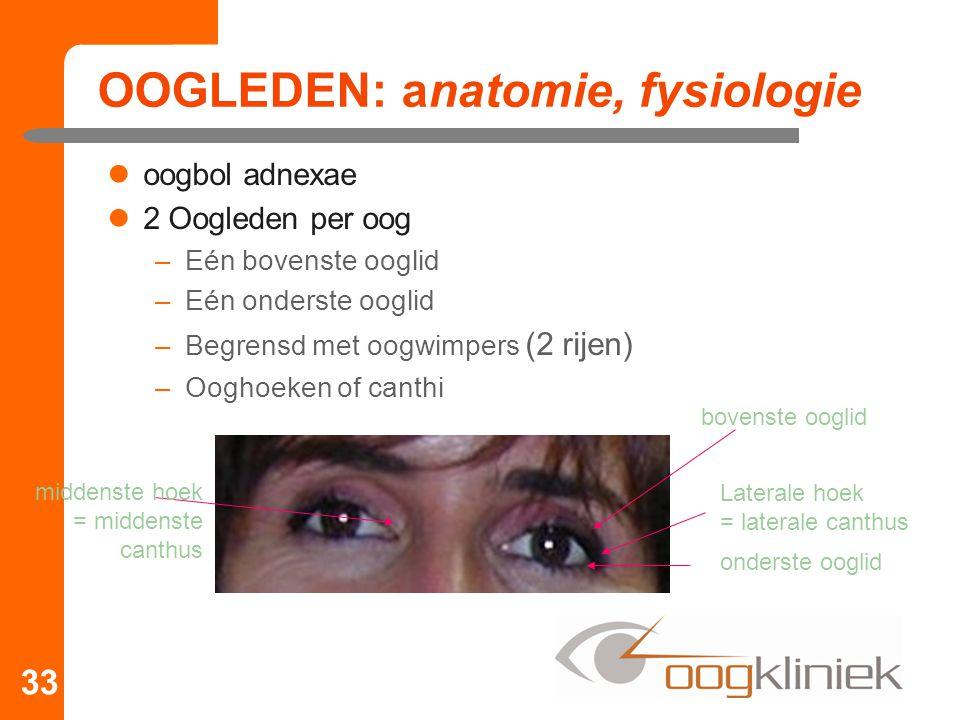 OOGLEDEN: anatomie, fysiologie