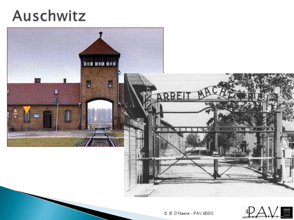 Auschwitz © B. D Haene - PAV 4BSO