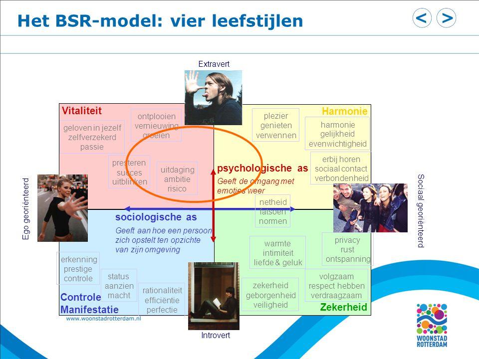 Het BSR-model: vier leefstijlen