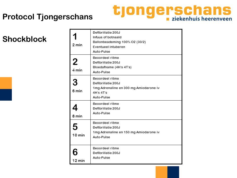 1 2 3 4 5 6 Protocol Tjongerschans Shockblock 2 min 4 min 6 min 8 min