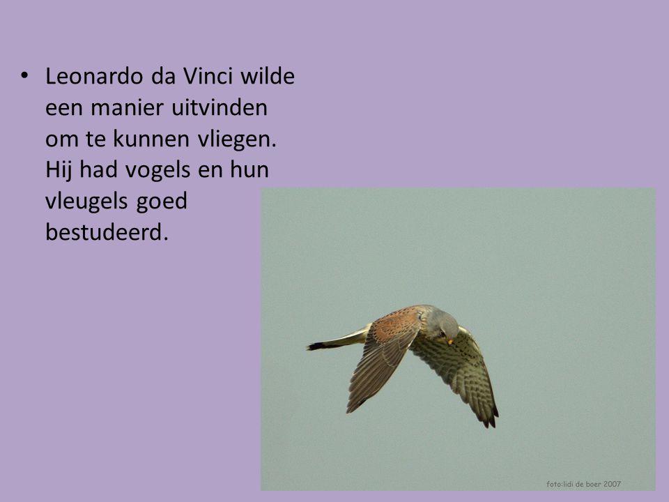 Leonardo da Vinci wilde een manier uitvinden om te kunnen vliegen
