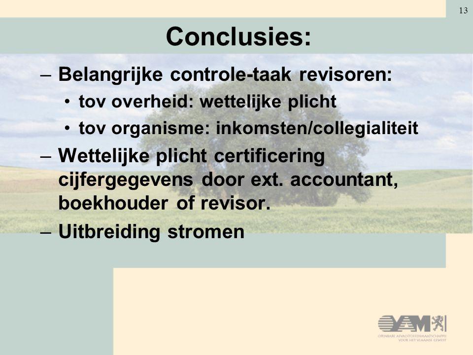 Conclusies: Belangrijke controle-taak revisoren:
