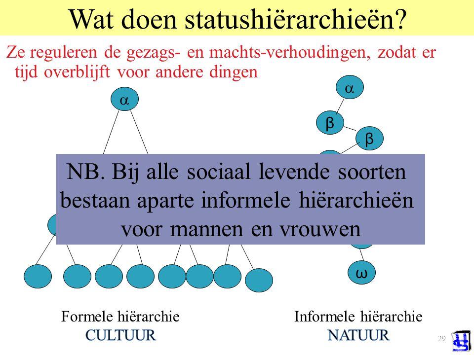 Wat doen statushiërarchieën
