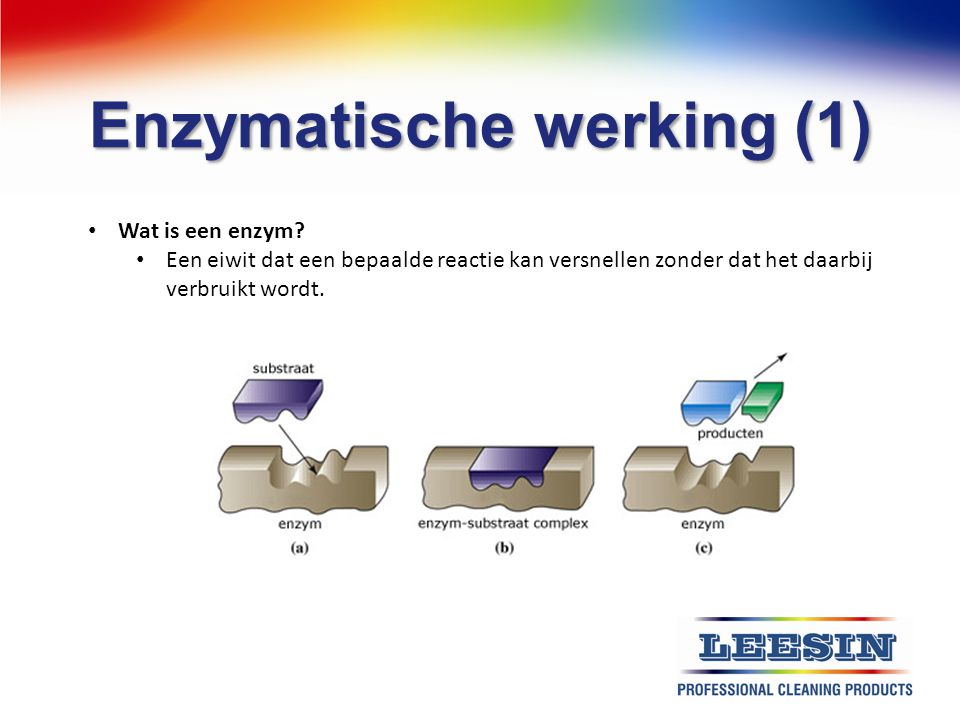 Enzymatische werking (1)