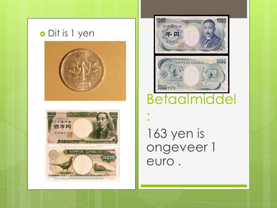 Dit is 1 yen Betaalmiddel : 163 yen is ongeveer 1 euro .