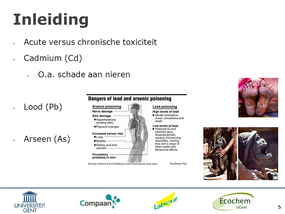 Inleiding Acute versus chronische toxiciteit Cadmium (Cd)