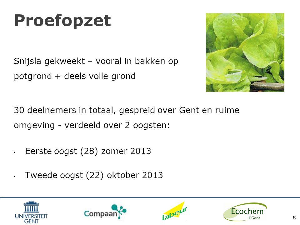 Proefopzet Snijsla gekweekt – vooral in bakken op potgrond + deels volle grond.