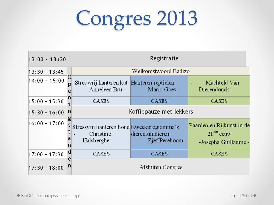 Congres 2013 BaDiZo beroepsvereniging mei 2013