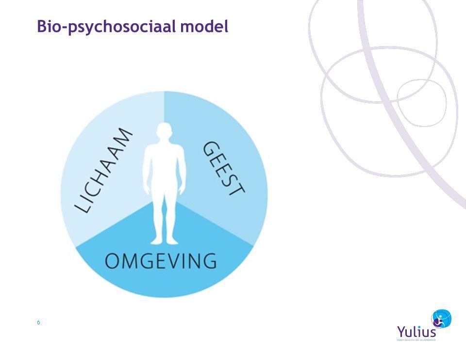 Bio-psychosociaal model