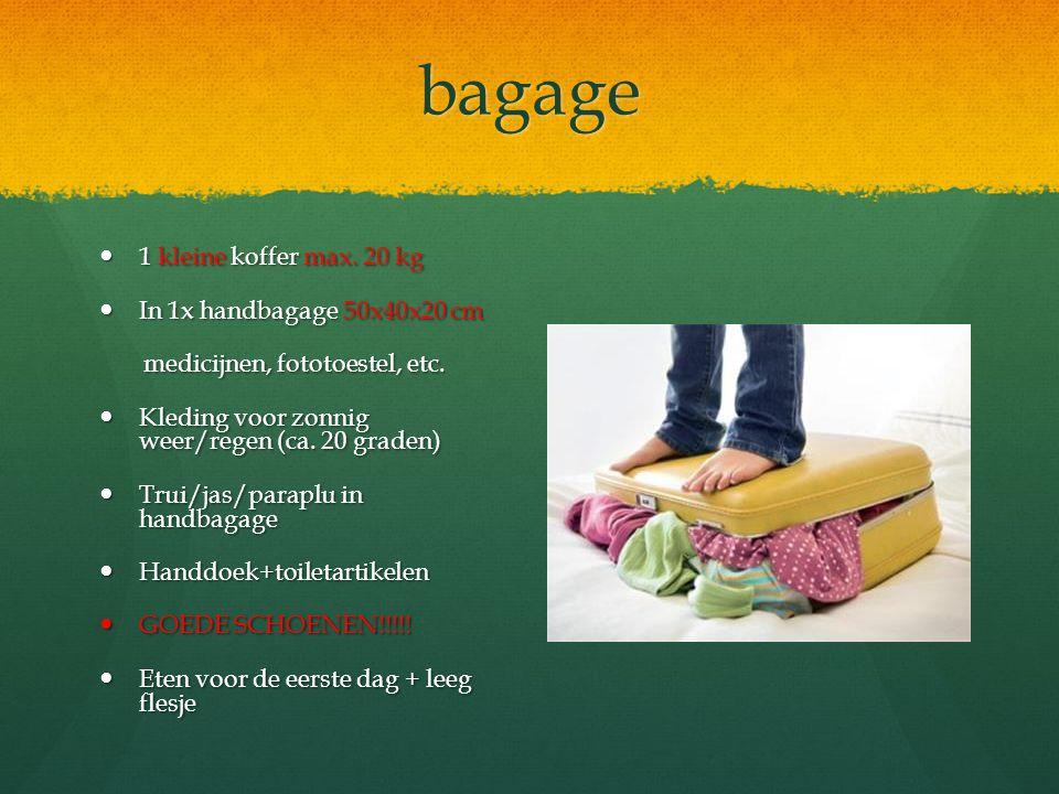 bagage 1 kleine koffer max. 20 kg In 1x handbagage 50x40x20 cm