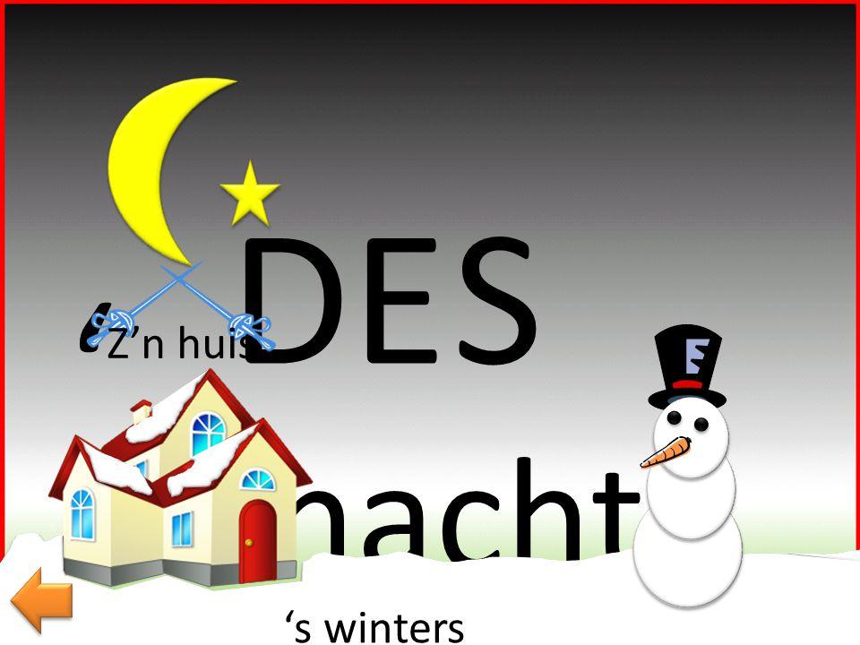 DE S ' Z'n huis 's nachts 's winters