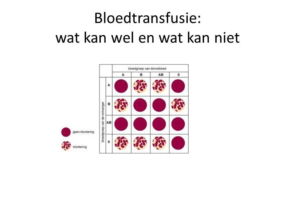 Bloedtransfusie: wat kan wel en wat kan niet