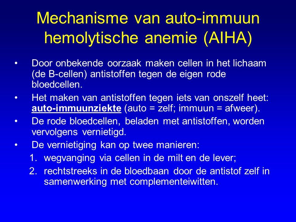 Mechanisme van auto-immuun hemolytische anemie (AIHA)