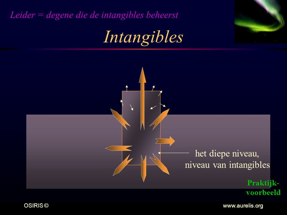 Intangibles Leider = degene die de intangibles beheerst