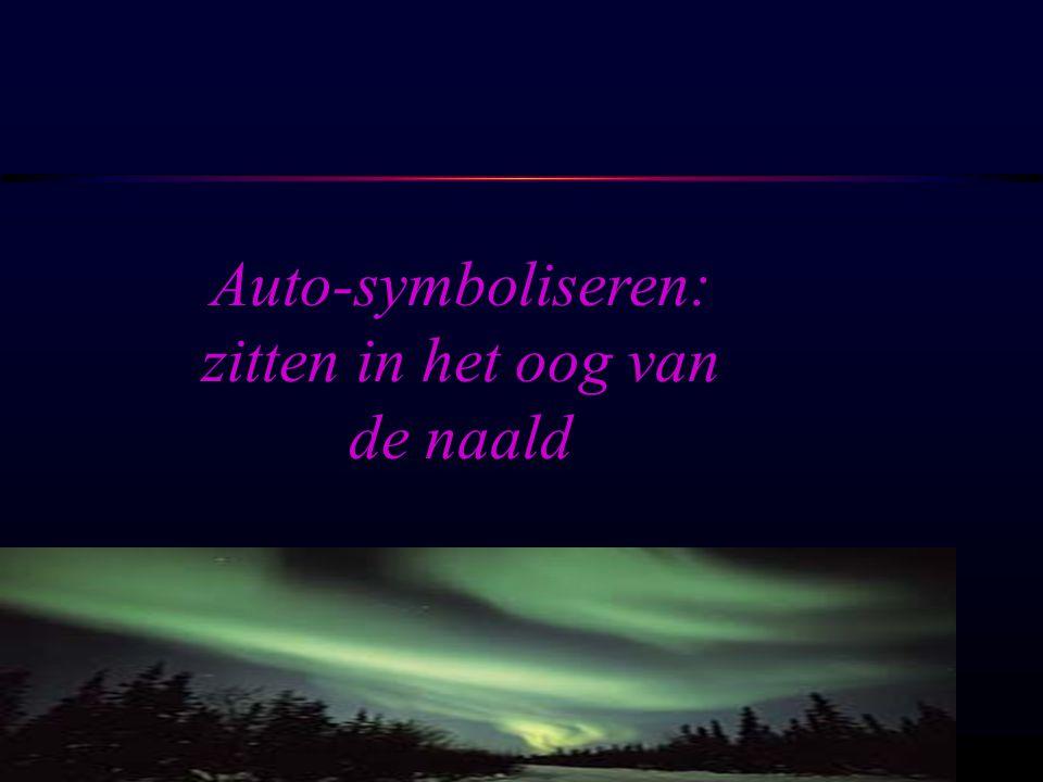 Auto-symboliseren: zitten in het oog van de naald