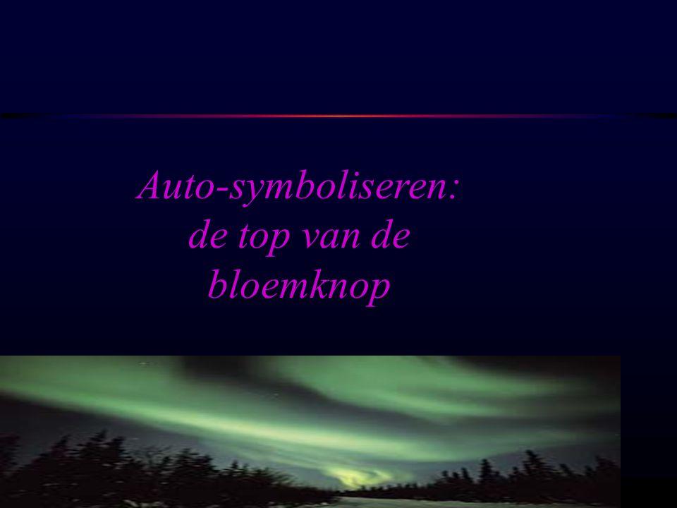 Auto-symboliseren: de top van de bloemknop